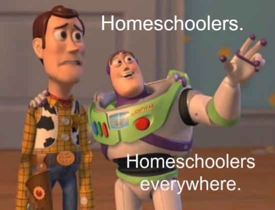homeschoolers meme